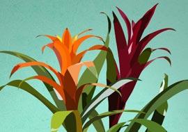 Flower1-illustrator_S
