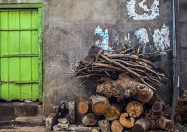 Green-Door-Wood-Sri-Lanka-Urban_S