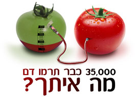 Tomato_Blood_Ad_Photoshop_S