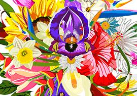 Flower2-illustrator_S