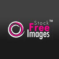 הורדת תמונות חינם מאתר - Free Images