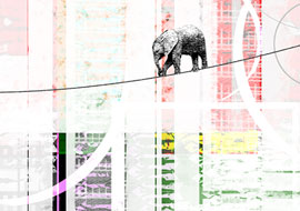 Elephant-Balance_Photoshop_S