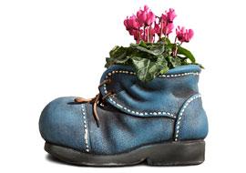 Flower-Shoe-Freebies_S