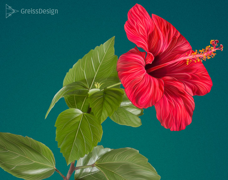 hibiskus-photoshop-example
